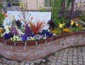 レンガの家とお花