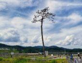 東日本大震災からちょうど10年