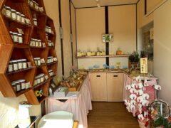 神奈川の工務店「せらら工房」のブログ 手作りパン屋さんがオープンしました。