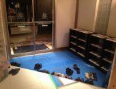 横浜市の工務店「せらら工房」のイベント&ニュース 皆様をお迎えする準備が出来ました。